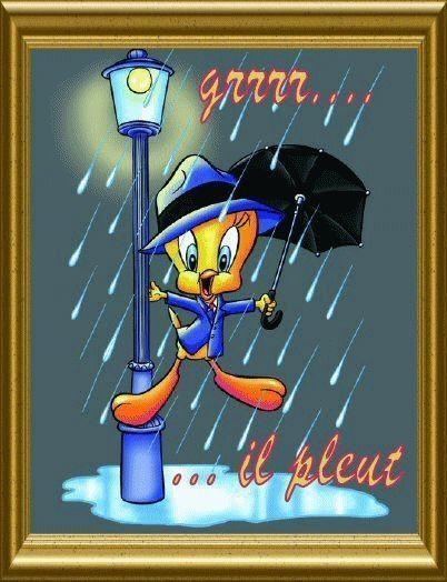 il pleut....